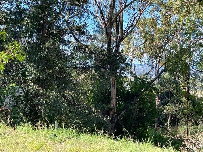 19 Bridgeview Crescent, Mount Riverview, NSW 2774