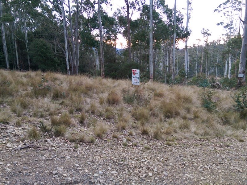 Lot 5/600 Mount Barrow Rd, Nunamara, Tas 7259