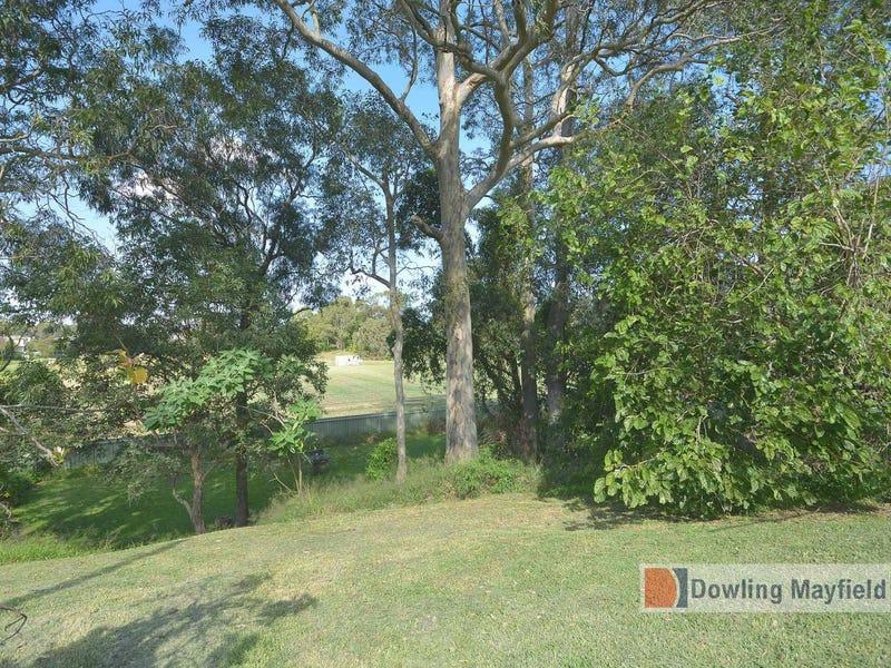 9 Cora Place, Shortland, NSW 2307