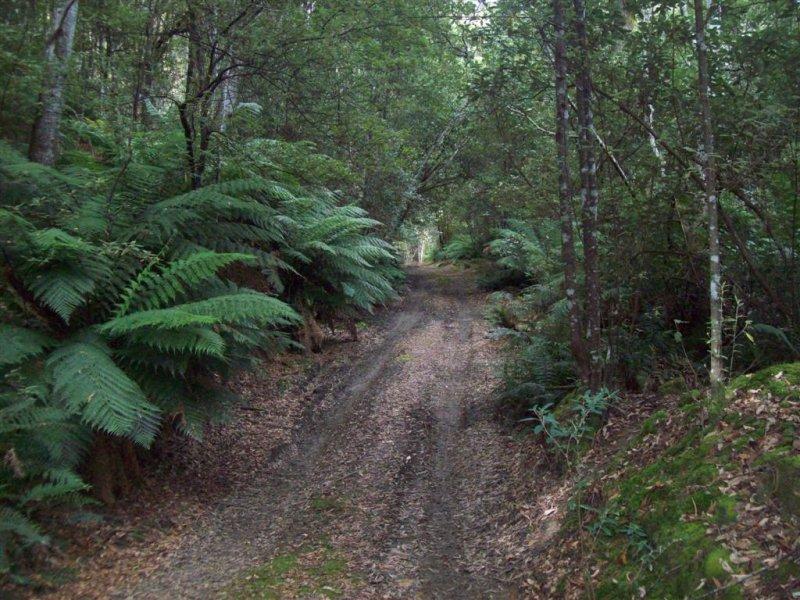 0 Gunns Plains Road, Gunns Plains, Tas 7315