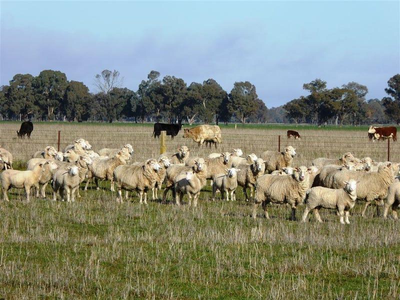 . Walbundrie Road, Culcairn, NSW 2660