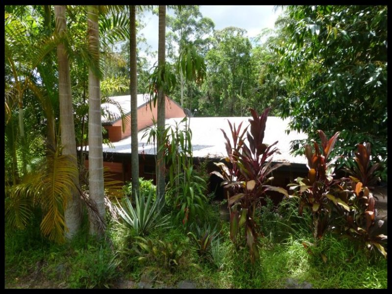 87 Ilkley Road, Eudlo, Qld 4554