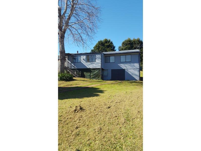 103 Hickory Street, Dorrigo, NSW 2453