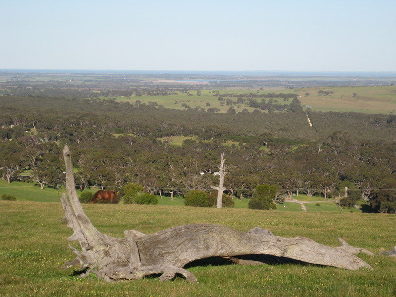 Lot 200 Trig Point Road, Currency Creek, SA 5214