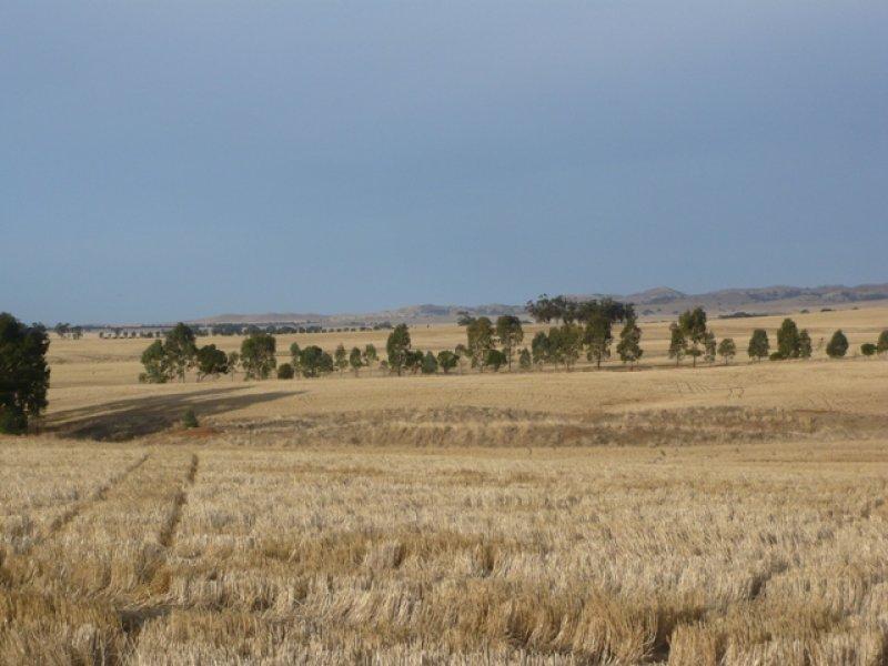 """. """"Donara"""", Mount Bryan, SA 5418"""
