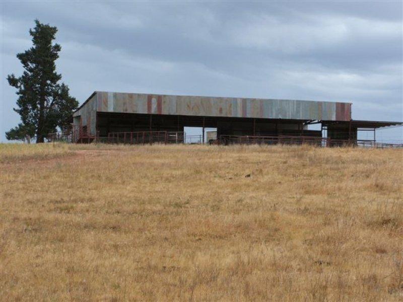 . Redlands Road, Corowa, NSW 2646