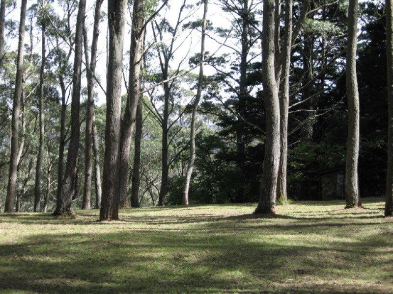 16 Wynnes Rocks Road, Mount Wilson, NSW 2786