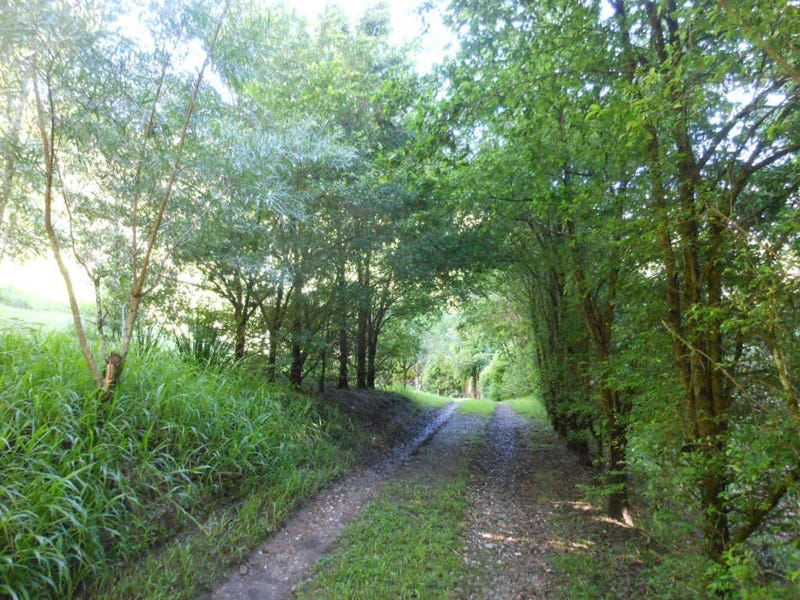 5174 Taylors Arm Road, Thumb Creek, NSW 2447