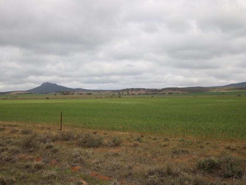 Lot 100 Armstrong Road, Quorn, SA 5433