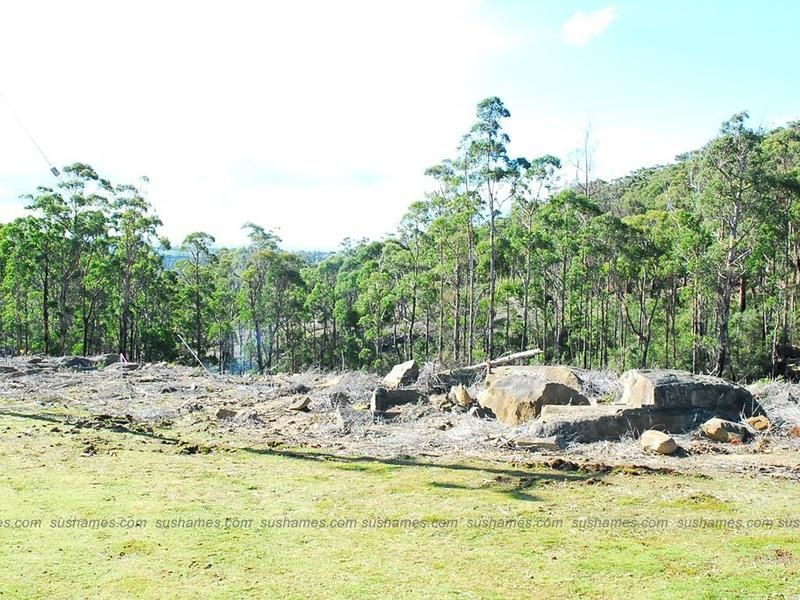 Lot 39 Forest Heights Drive, Tugrah