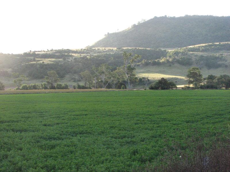 270 Emu Creek Road, Emu Vale, Qld 4371