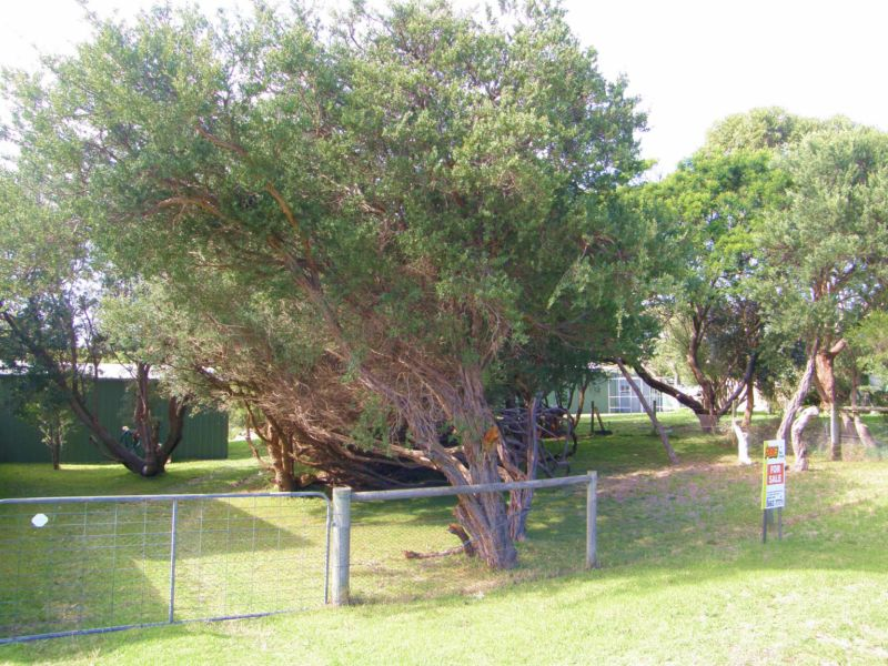 60 MCINDOE AVENUE, Venus Bay, Vic 3956