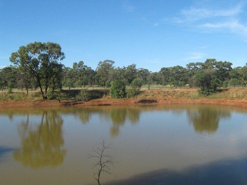 ., Nyngan, NSW 2825