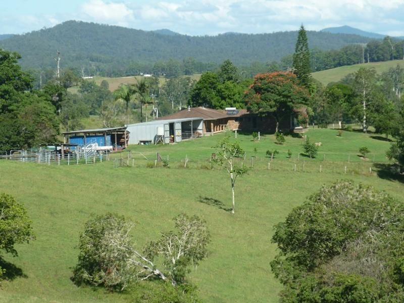 123 Williams Hill Road, Yarranbella, NSW 2447