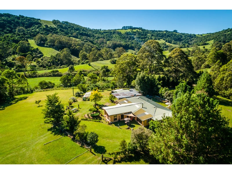 413 Johnsens Road, Dorrigo, NSW 2453