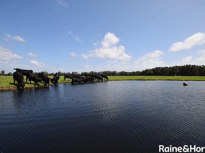 Lot 57 Greenwell Point Road, Pyree, NSW 2540
