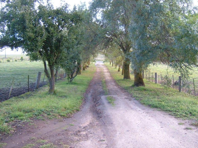 .105 Willowmavin Road, Kilmore, Vic 3764