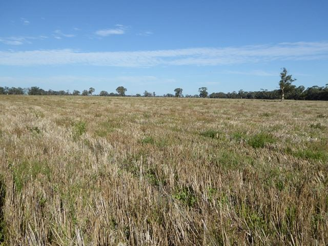 . Gap Road, Frances, SA 5262