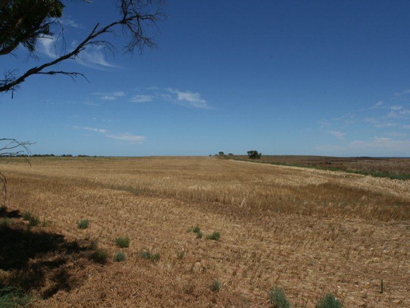 Lot 1253, Hundred of Wallaroo, Moonta, SA 5558