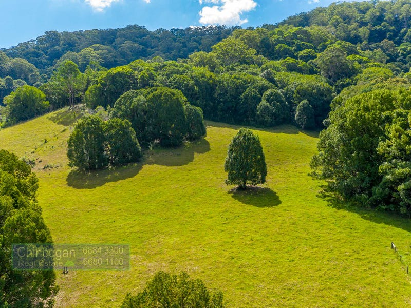 584 The Pocket Road, The Pocket, NSW 2483