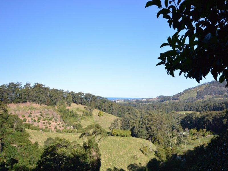 52 Lovetts Road, Korora, NSW 2450