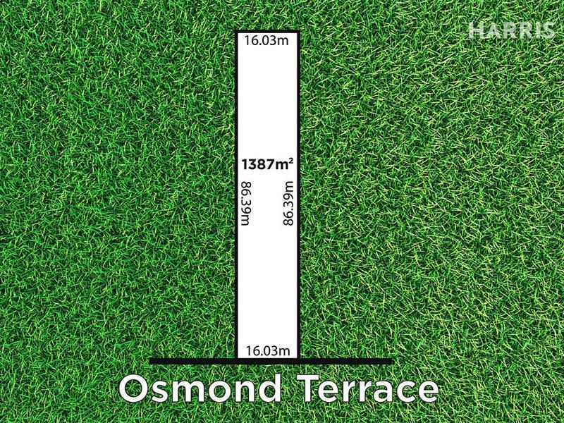 9 Osmond Terrace, Fullarton, SA 5063