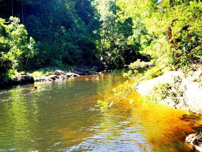 112 Coopers Creek Road, Upper Coopers Creek, NSW 2482
