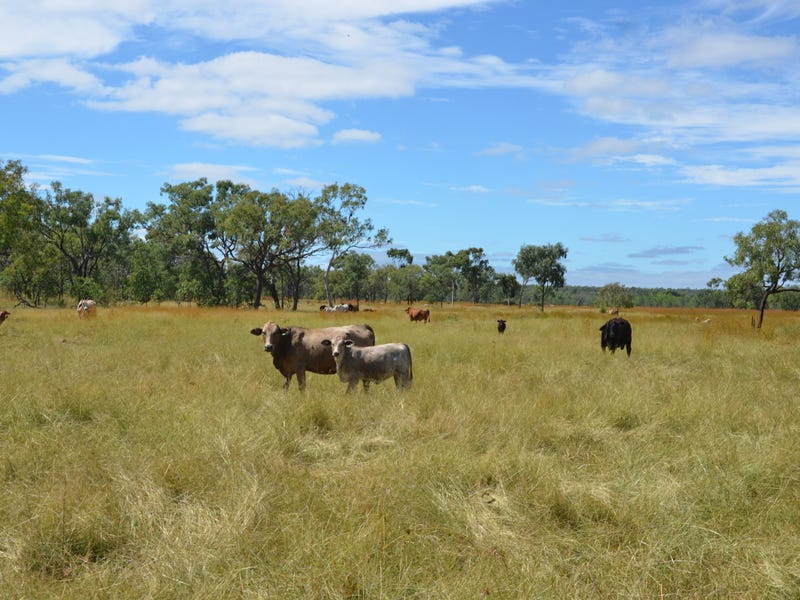 Lot 3 Rocky Springs Road, Mount Surprise, Qld 4871