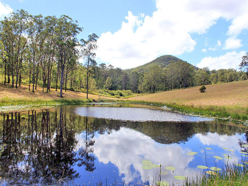 Lot 8 Toms Gully Road, Hickeys Creek, NSW 2440