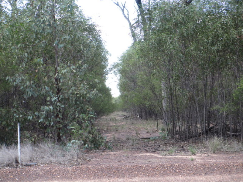 Lot 228 ORCHARD ROAD, Tara, Qld 4421