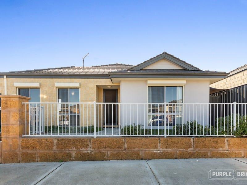 16 Splendens Avenue, Banksia Grove, WA 6031