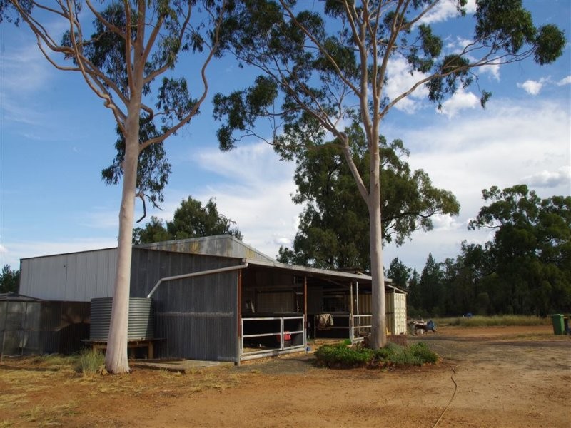 363 Gun Club Road, Narrabri, NSW 2390