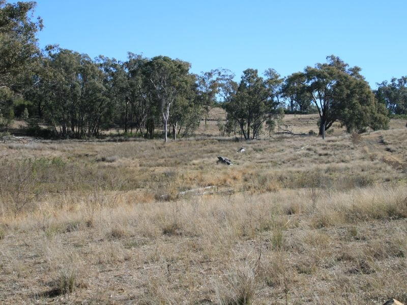 Lot 2 Texas Stanthorpe Road, Stanthorpe, Qld 4380
