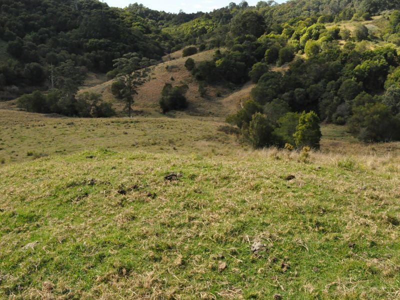1390 Mooral Creek Road, Wingham, NSW 2429