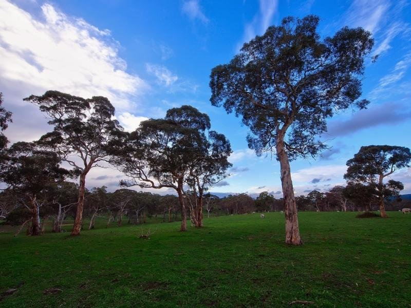 94 Pottery Road, Hope Forest, SA 5172