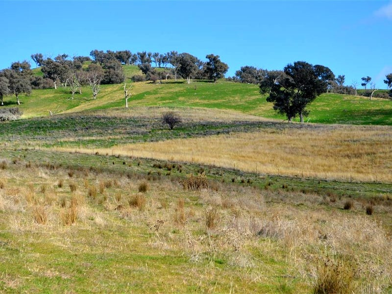 'Tanyard Creek' Stantons Road, Adelong, NSW 2729