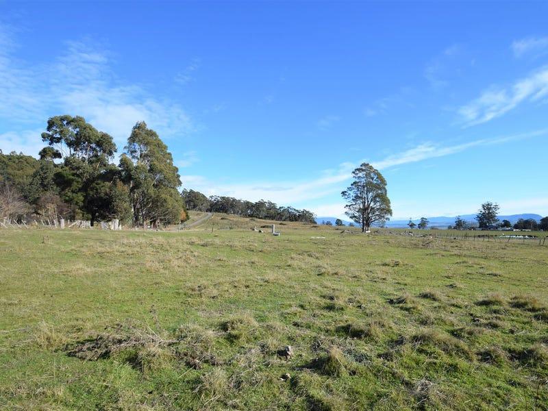 127 Brodies Road, Golden Valley, Tas 7304