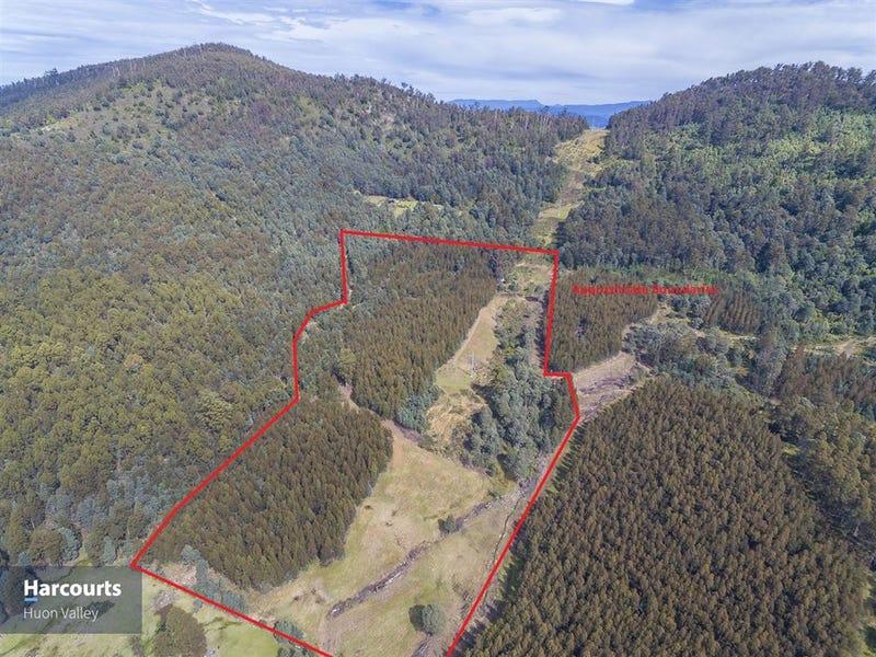1012 Halls Track Road, Pelverata