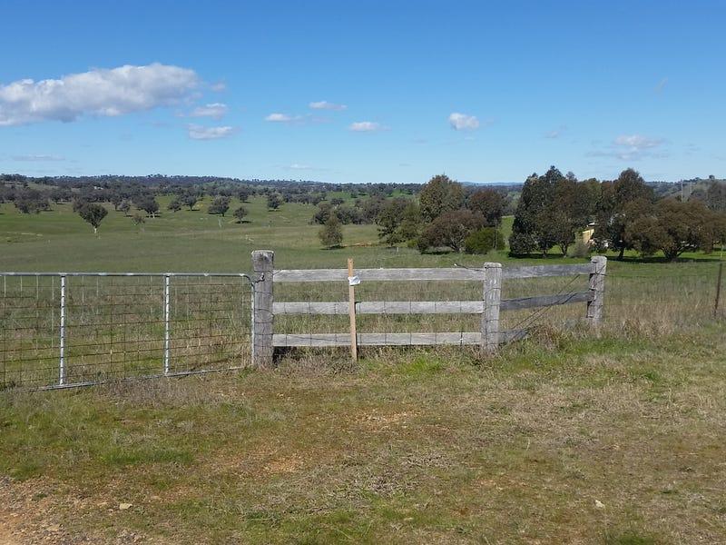 217 Tarrawingee Road, Mumbil, NSW 2820