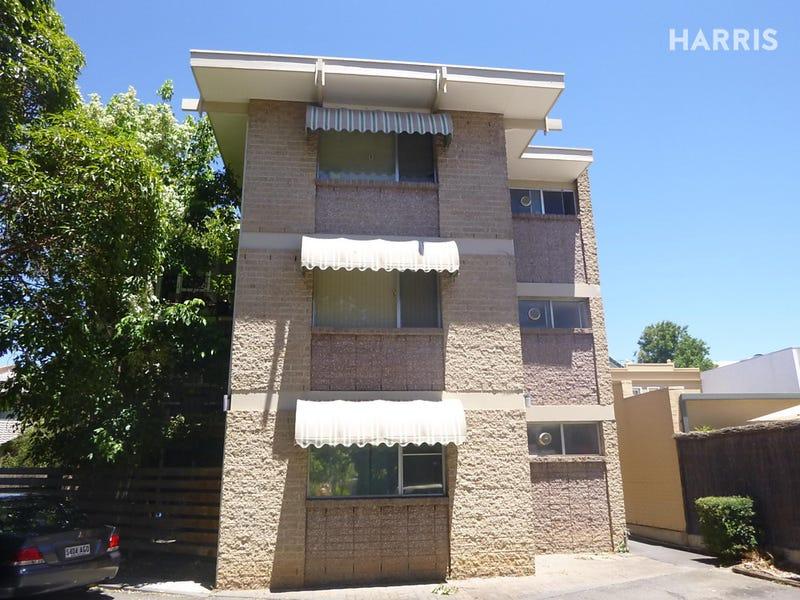11/377  Angas Street, Adelaide, SA 5000