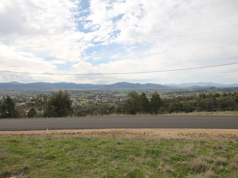 67 Ray Carter Drive, Quirindi, NSW 2343