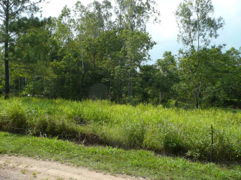 Lot 1, Sheahans Road, Long Pocket, Qld 4850