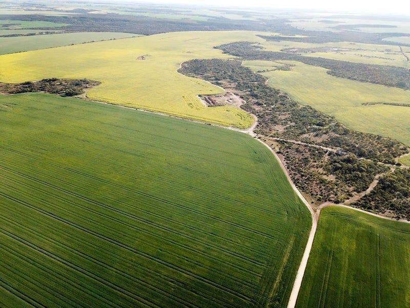 Carsim Farms 8780 North West Coastal Highway, Binnu, WA 6532