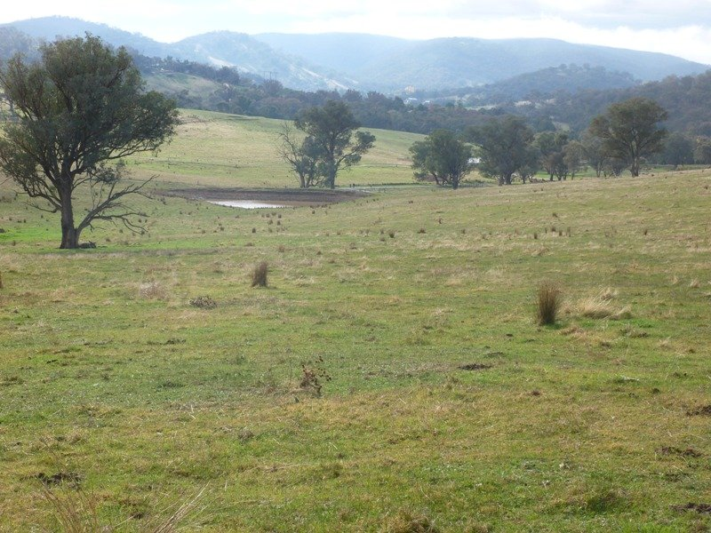 Lot 5 Altmeier Lane, Splitters Creek, NSW 2640