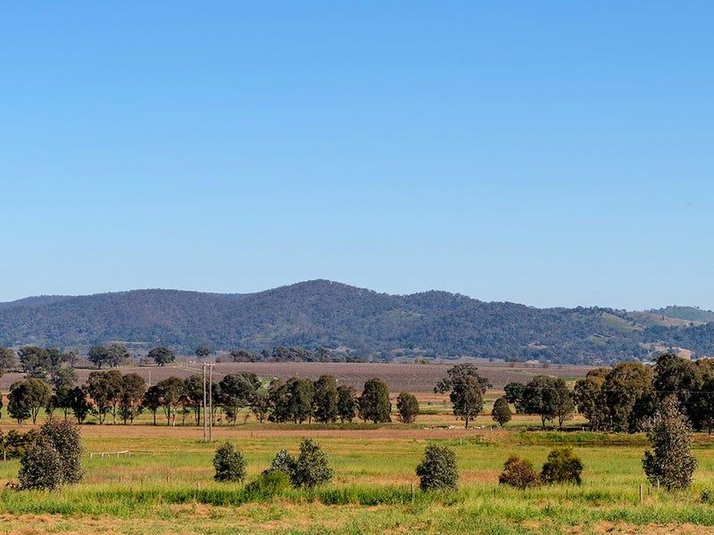 2391 Castlereagh Highway, Gulgong, NSW 2852