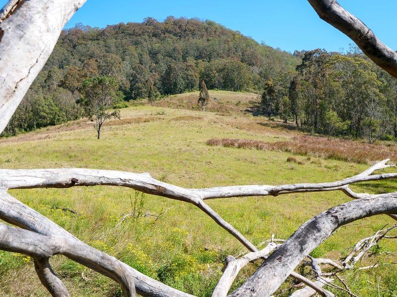 Lot 6 Blue Bonnet Road, Lambs Valley, NSW 2335
