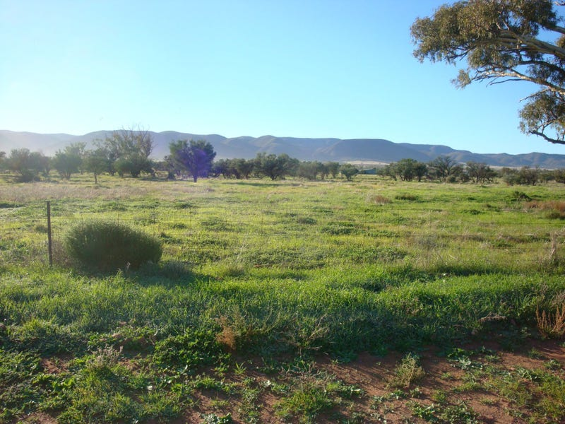 Lot 180 Off Gulf View Drive, Napperby, SA 5540