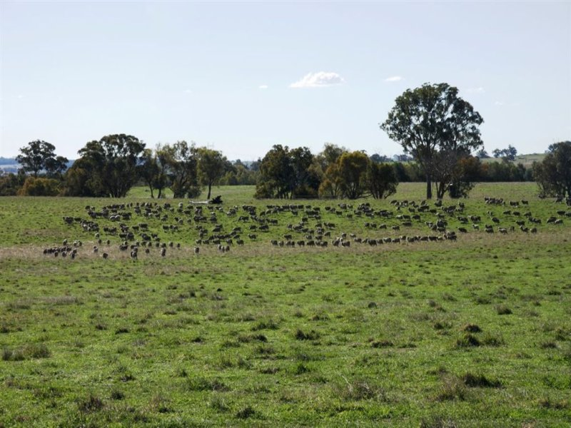 1 Clancys Road, Gunning, NSW 2581