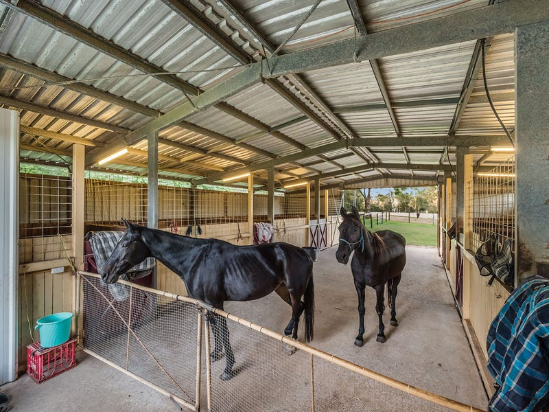 76 Mansfield Road, Elimbah, Qld 4516