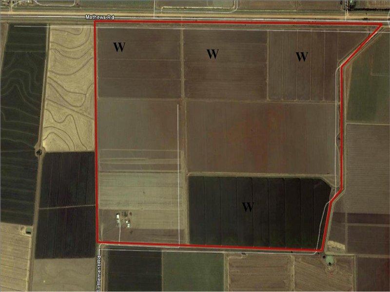 . Irrigation Farm, Whitton, NSW 2705